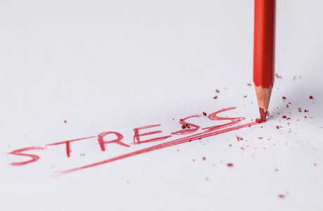 Stress Can Impact Your Overall Health: Here's What You Can Do About It